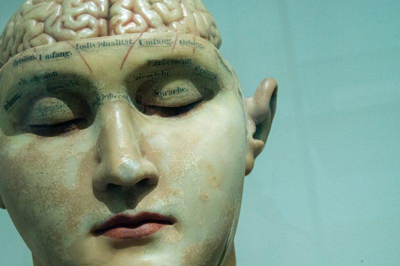 Piyasa Rekabet Gücü ve Rasyonalite: Beyin Odaklı Bir Yaklaşım*
