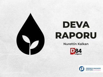 Siyasi Parti İnceleme Raporları: DEVA Partisi