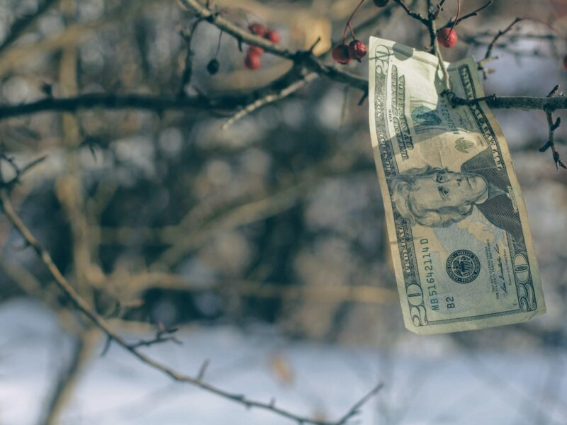 Bir Ekonomik Kurumlar Tartışması: İMF Neden Zor?