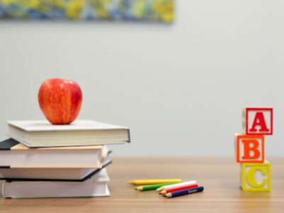 Türkiye'de İlk ve Ortaöğretimin Finansmanı ve Mevcut Sorunlar[1]